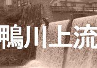 オオサンショウウオのいる京都『鴨川上流』の飛込みスポットへ潜入調査!