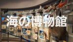 """家族旅行に行くなら千葉県勝浦にある""""海の博物館""""がオススメ!!行き方まとめ"""