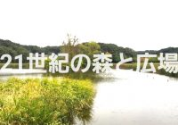 【写真で観る】湧水が湧く池と美しい森が楽しい「21世紀の森と広場」を徹底解説!!