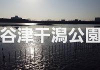 開発進む千葉のラストフロンティア「谷津干潟公園」の魅力とは!?