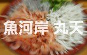 せっかく静岡沼津港に行って食べるなら『魚河岸 丸天』がおススメな話!
