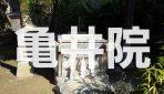 万葉集にも詠まれた「真間の井」のある弘法寺の子院『亀井院』へ潜入調査!!