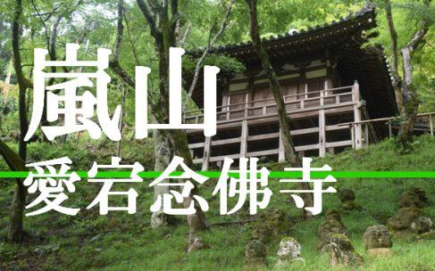 壮観な千二百羅漢が立並ぶ嵯峨野めぐりの始発点『愛宕念仏寺』へ潜入調査!