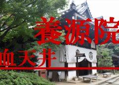 武士達の無念の血が染込んだ血天井が祀られる京都の『養源院』へ潜入調査!