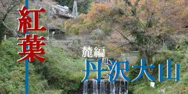 紅葉を観に江戸時代から人気の大山詣をしに『丹沢大山』へ行ってみた~麓編~