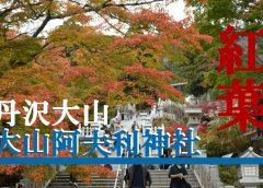 紅葉・夜景が美しい神奈川の絶景スポット『大山阿夫利神社』に行ってみた
