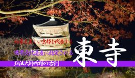 夜の紅葉が美し過ぎる京都を代表する古刹『東寺(教王護国寺)』に行ってみた