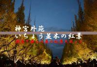 関東で最も人気の紅葉スポット『明治神宮外苑の銀杏並木』を観に行ってみた